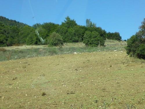 Εκκαθαρίσεις εκτάσεων διπλα στο δάσος